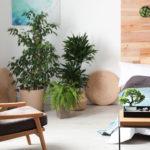 casa stile zen